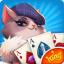 Shuffle Cat Cards