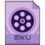 Dimo MKV Video Converter